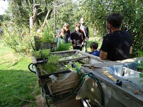 Atelier jardin: Aquaponie