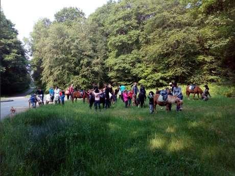 Centre équestre et poney club de mi-forêt