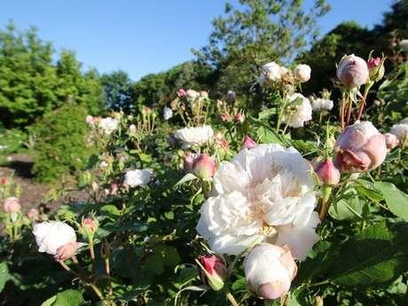Rendez-vous aux jardins - Jardins de la Peignie