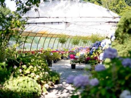 Portes ouvertes : Pépinière les Hortensias du Haut Bois