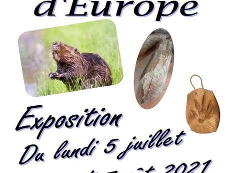 """Exposition """"Le Castor d'Europe"""""""