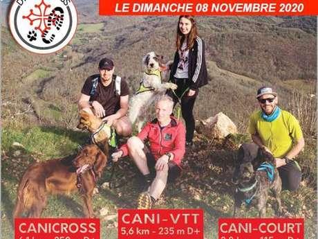 Canicross