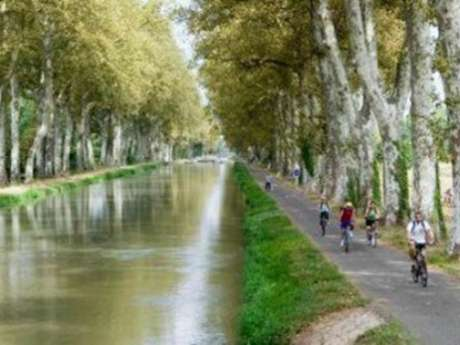 Green cycle path from Port Canal