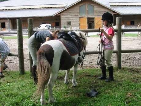 Equitation au Centre équestre du Montcalm