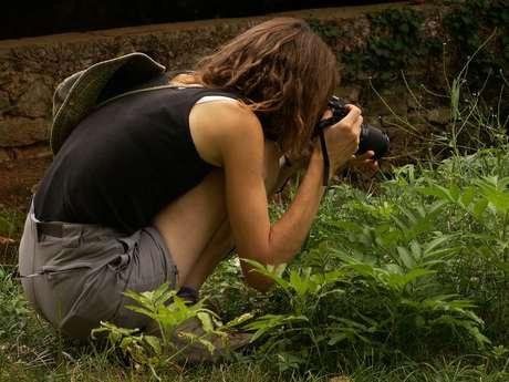 Sortie nature - spécialisée photos