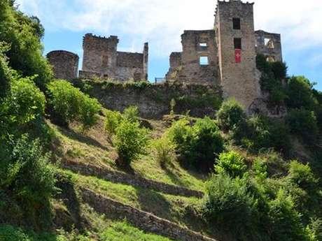 Château Lou Viel Castel