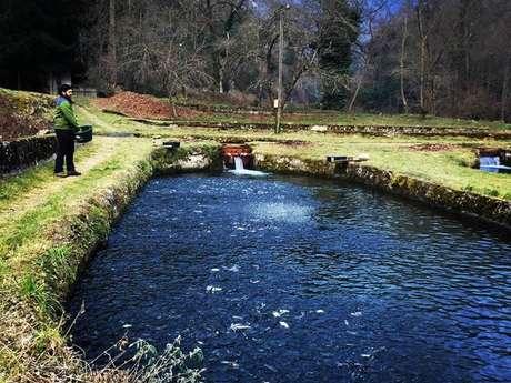 Ferme Aquacole des Chutes d'Aston