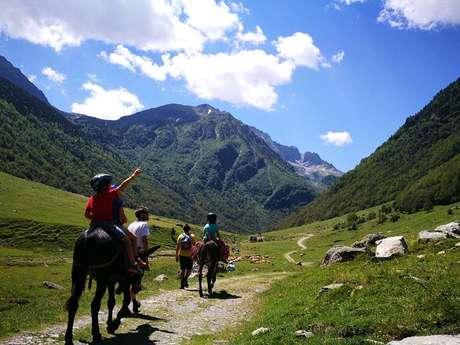 Randonner avec un âne en Haute Ariège