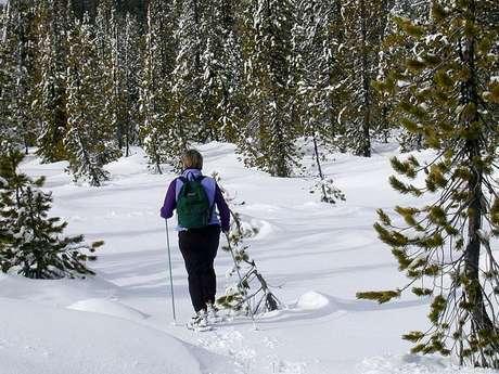 MONTCALM AVENTURE - SNOWSHOES HIKE