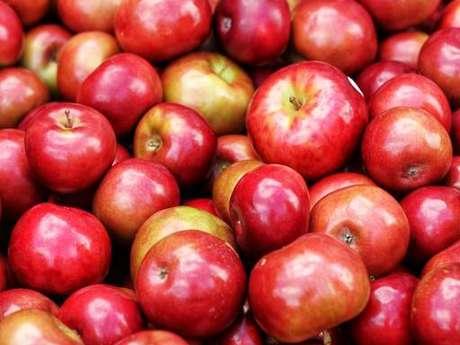 Journée pressage de pommes