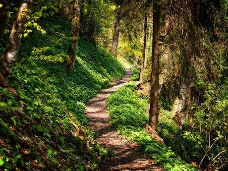 Parcours athlé nature : Hameau de Genat