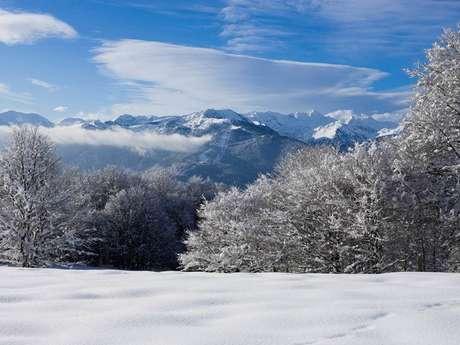 Location de ski - Espace nordique du Chioula