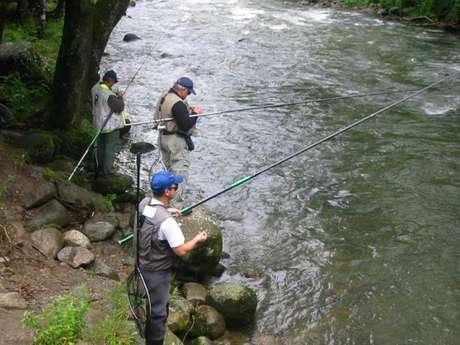 Concours de pêche à la truite fario