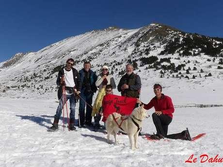 Cani-raquettes avec le Dahu Ariégeois