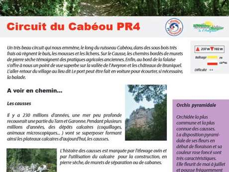 Balades et randonnées en Terrasses et Vallée de l'Aveyron