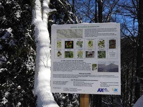Bonascre botanical trail