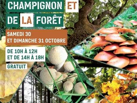 4e salon du champignon et de la forêt