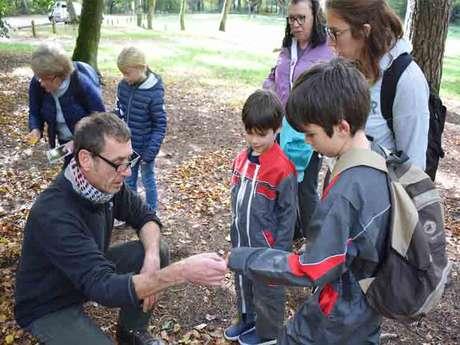 Chasse au trésor botanique avec les enfants