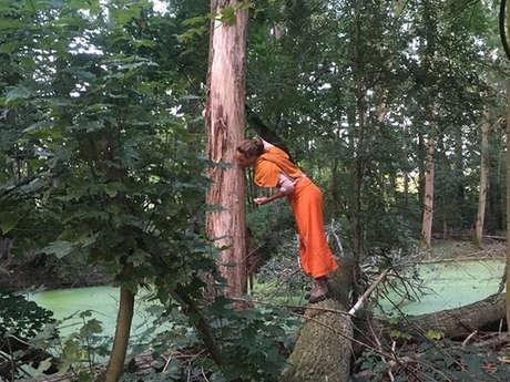 Atelier d'éveil cognitif en forêt de Creuse
