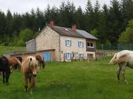Location Gîtes de France - ROYERE DE VASSIVIERE - 8 personnes - Réf : 23G1324