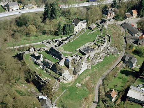 Ruines du Château féodal de Moha