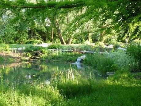Aire de pique-nique du Parc Saint-Jacques ou Etang Duthu