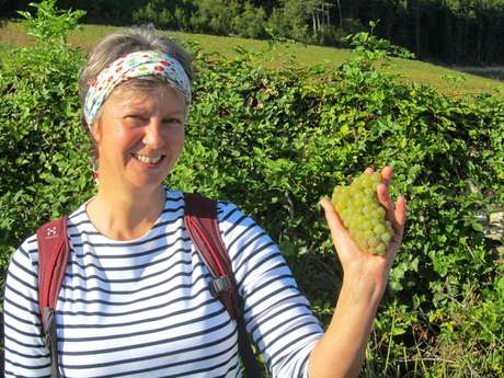 Karoline Knoth - La Bourgogne à vos Pieds