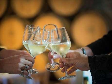 Visite Dégustation & Mâchon dans un domaine viticole