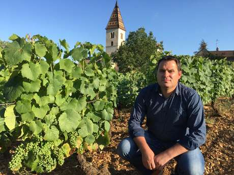 Société Vin et Terroirs marque Wine and tours