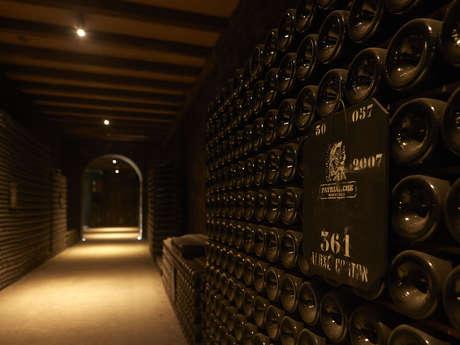 Visite révélations : initiation aux vins de Bourgogne et dégustation dans les caves Patriarche