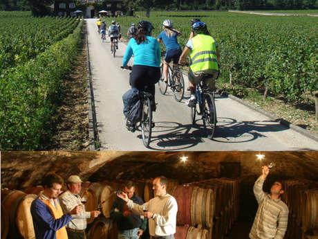 Active Tours : Week-end vélo et vins dans les grands crus