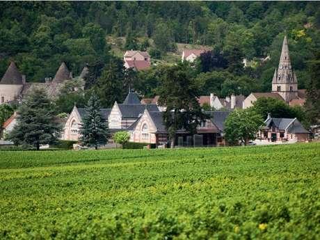 Beaune Tourisme : Visite Dégustation & Mâchon Domaine Henri de Villamont