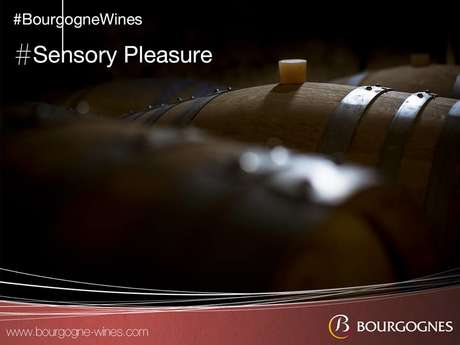 Program Sensory Pleasures with Bourgogne Wines
