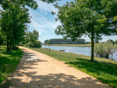 From Plessis-Bourré to the Lower Anjou Valleys
