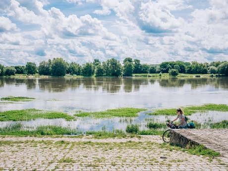 Circuit of Loire Layon Aubance vineyards