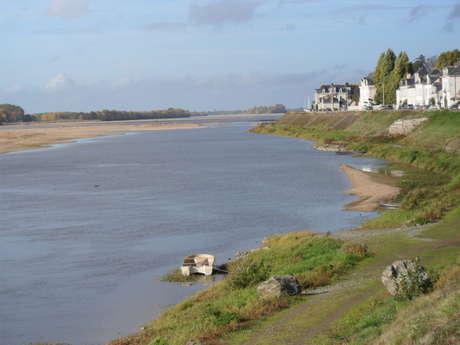 Entre Loire et Authion