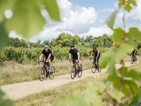 Escapade  Angers Gravel Tour  au cœur du vignoble