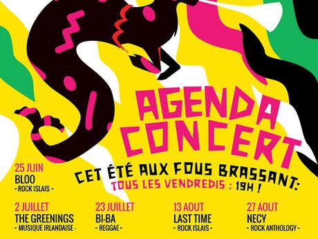 Concert : THE COMPANY (Rock 70) à la micro-brasserie Les Fous Brassant