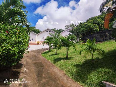 Domaine Paille en Queue - Ile Intense