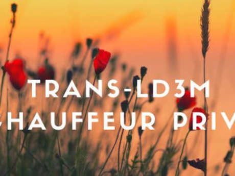 Trans-LD 3M