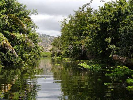 Réserve Naturelle Nationale Etang de Saint-Paul