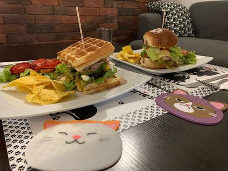 Matouccino Cat Café
