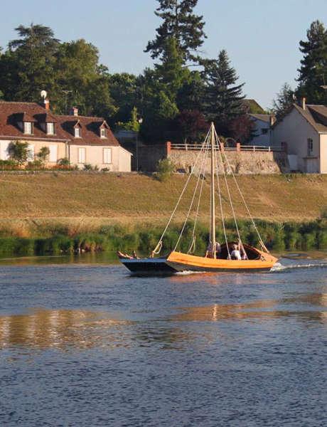A la découverte de la flore de Loire
