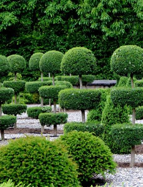 Journées Européennes du Patrimoine aux Jardins Sothys