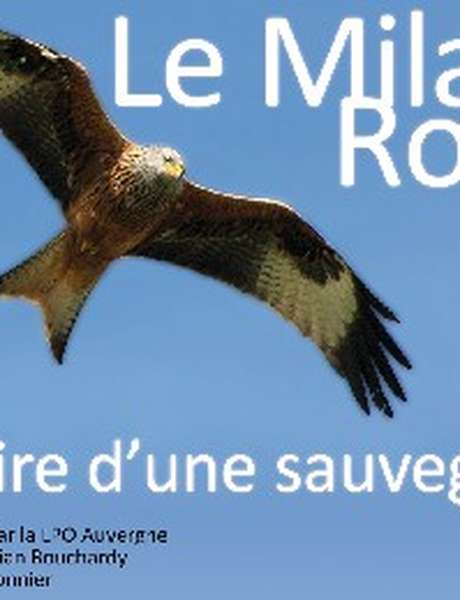 """Projection du Film Documentaire « Le milan royal, histoire d'une sauvegarde"""""""