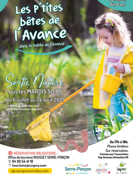 """Sortie nature """"Les P'tites bêtes de l'Avance"""""""