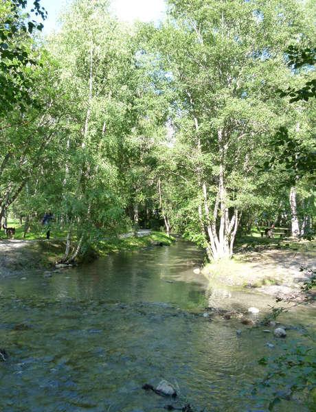 Nature et biodiversité