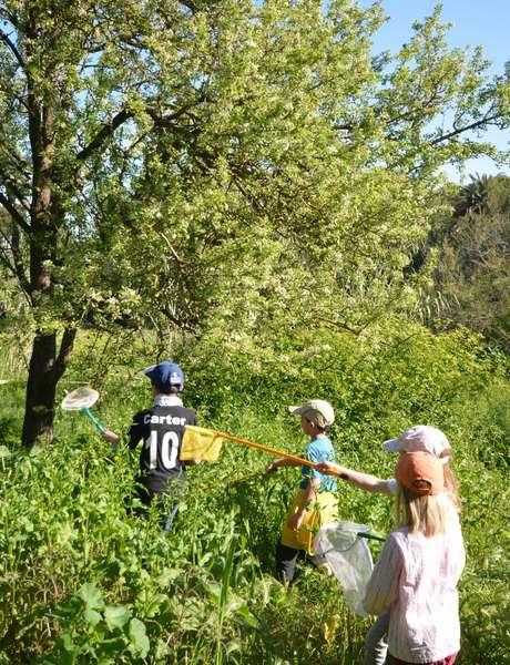 Les petits explorateurs du maquis (visite guidée spécial enfants)