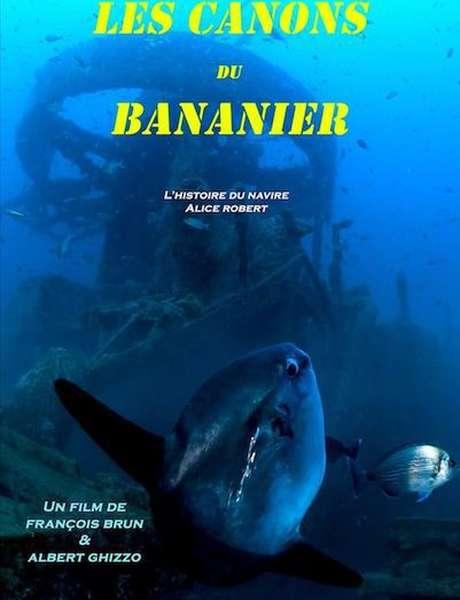 Ecran nature à Porquerolles - Les canons du Bananier (F.Brun et A.Ghizzo)
