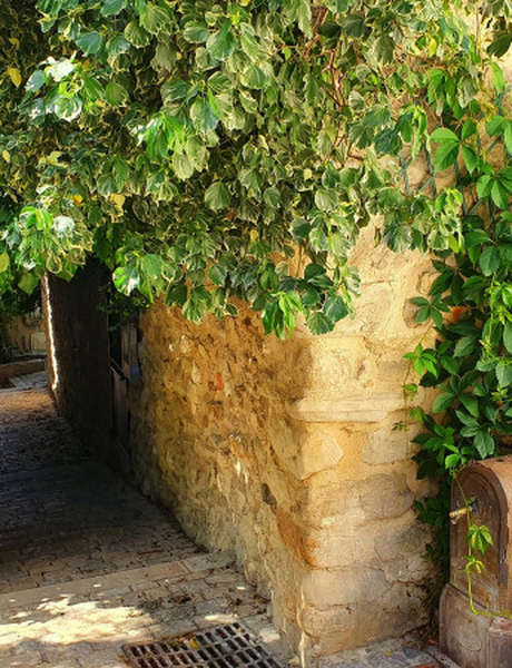 French walking guided tour: le village de Puyloubier